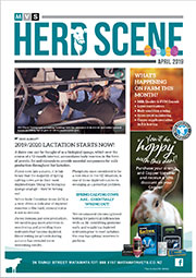 April 2019 Herd Scene