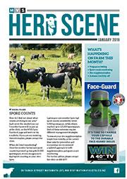January 2018 Herd Scene