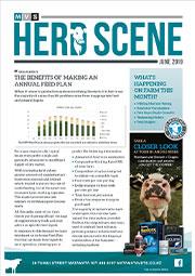 July 2019 Herd Scene