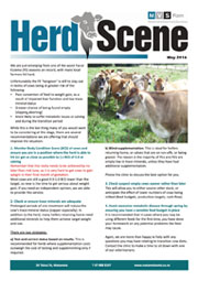 Herd-Scene-May_2016