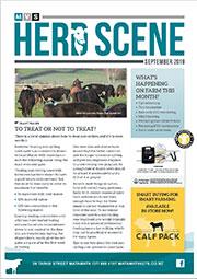 September 2019 Herd Scene