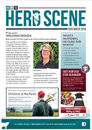 November 2019 Herd Scene