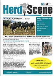 Herd-Scene-October_2016